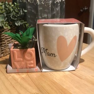 NWT Mother's Day gift set mug and succulent set